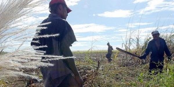 Costa Rica - Pasividad en registro como usuarios de mano de obra migrante