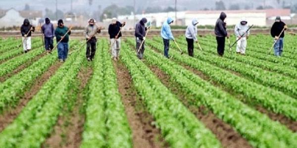 Argentina- Integración de trabajadores migrantes